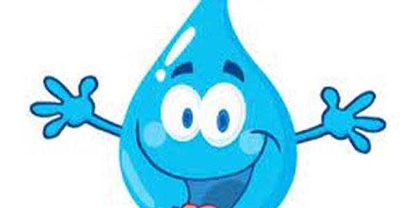 Gestió i consum responsable de l'aigua
