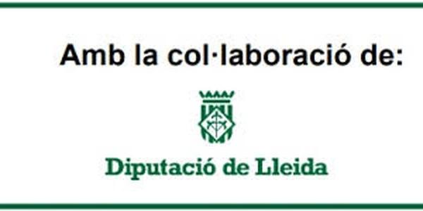 Pla Extraordinari d'Inversions Locals de la Diputació de Lleida, 2017 i 2018.